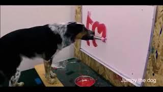 Собака пишет свое имя