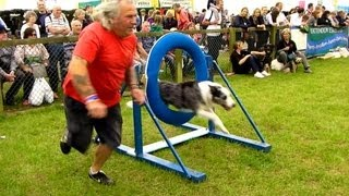 "Newbury Show 2013 Colin's Basic Dog Agility ""megan, Filby, Hugo And Bob"""