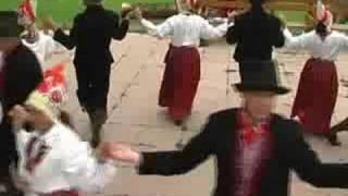 Puu 2008 Järvakandi I osa