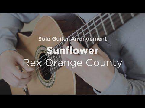 Sunflower by Rex Orange County | Solo guitar arrangement / cover
