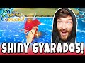 WORLDS FIRST WILD SHINY GYARADOS IN POKEMON LETS GO!