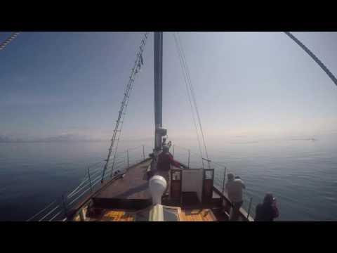 Alaska Humpback Diving Near Motor Vessel DB