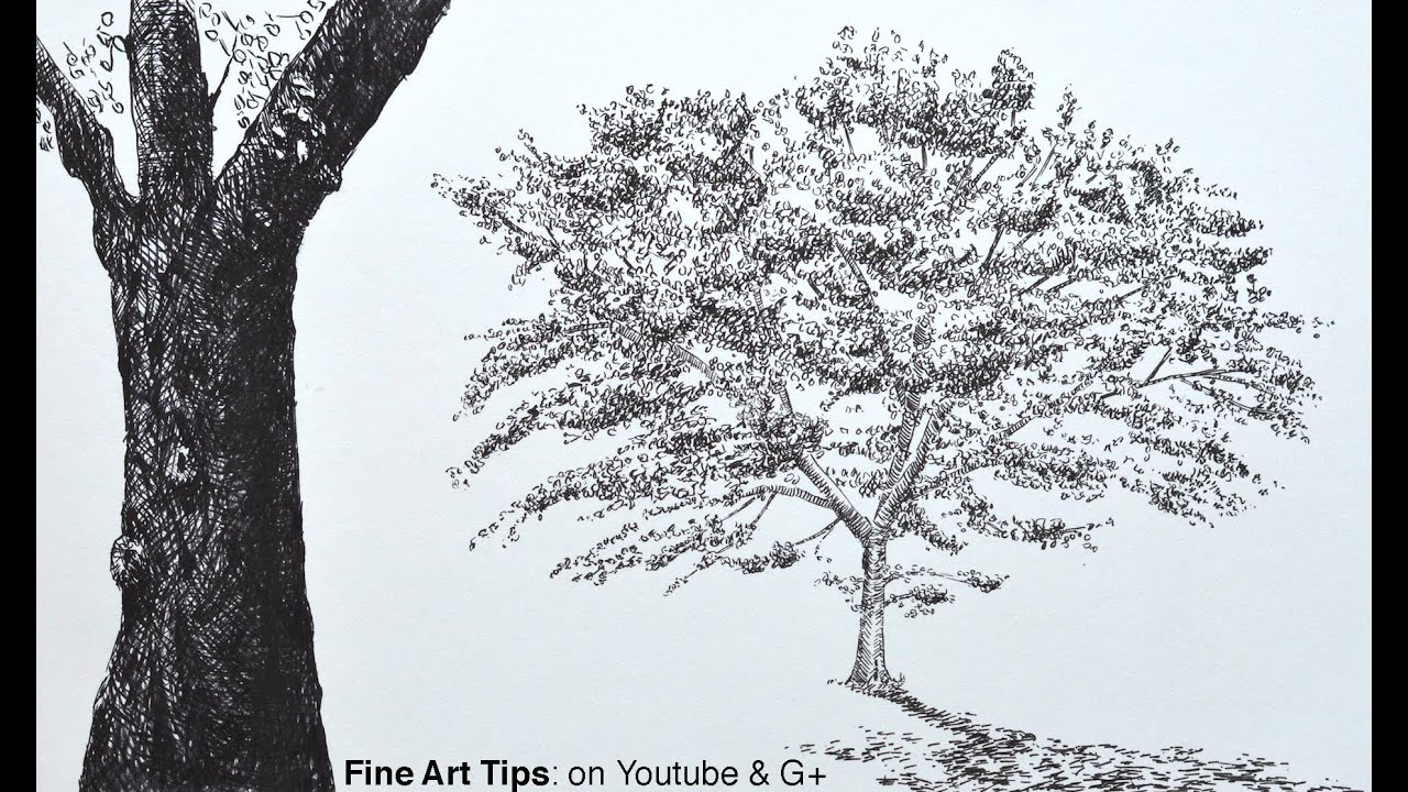 How to Draw a Tree With Brush Pens - An Oak Tree - How to ...