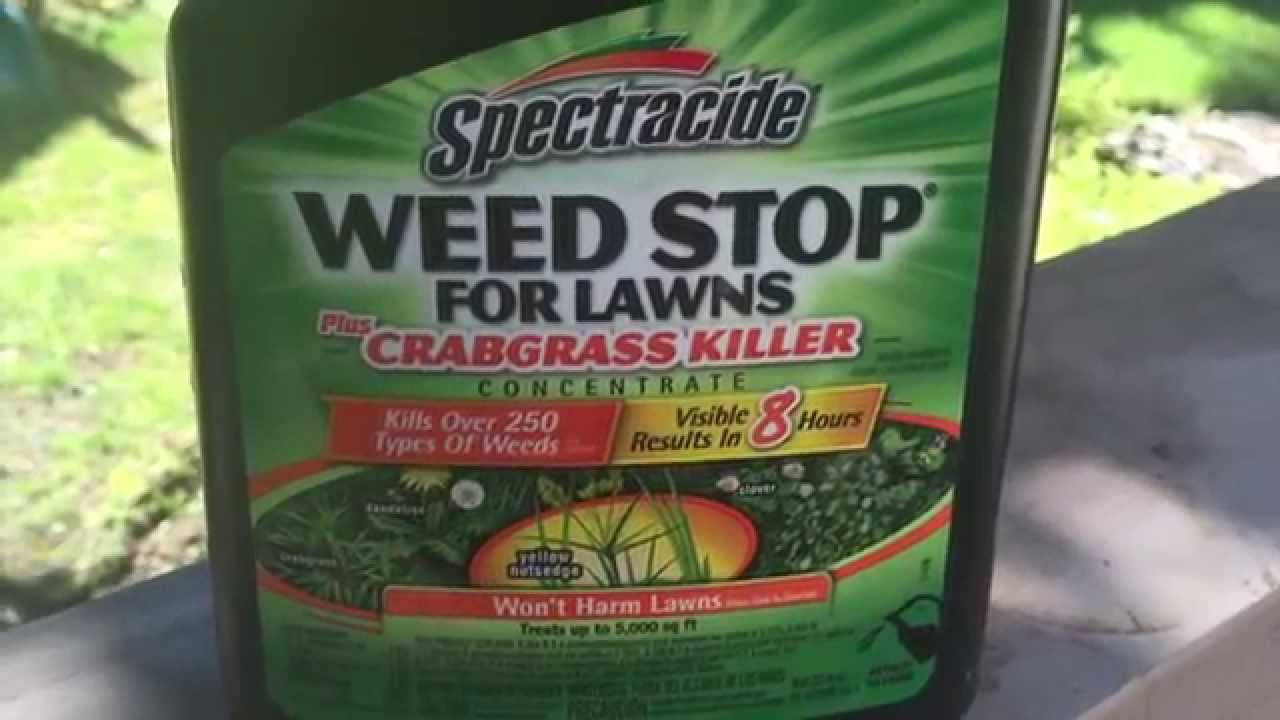 How to get rid of lawn weeds - Spectracide Weedstop For Lawns Review How To Get Rid Of Crabgrass Youtube