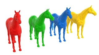 Learn Colors With Horses  For Kids Colors Learning Videos For Babies