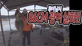 [워러]의 루어낚시 자연식좌대 86cm광어가!!