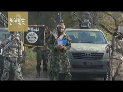 "Nigerian Army claims Boko Haram militant leader ""fatally wounded"""