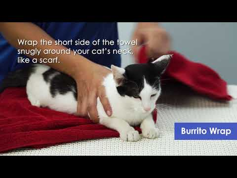 How to perform subcutaneous injections for the treatment of (FIP)