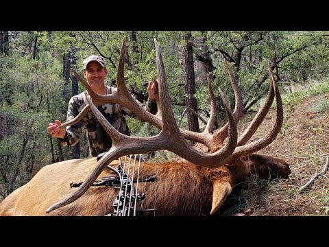 New Mexico Archery Elk Hunting - 2019 Bow Hunt