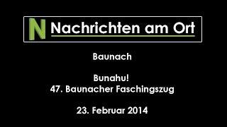 47. Faschingsumzug in Baunach, 23. Februar 2014