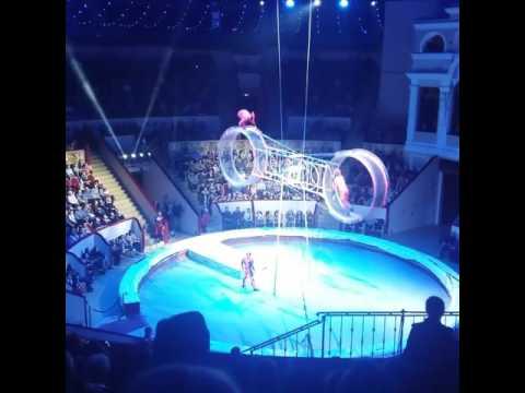 в цирк санкт-петербурге на фото фонтанке