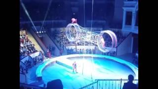 Цирк на фонтанке ужас без страховки 2