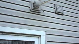 Clogged Dryer Vent Cleaning 2