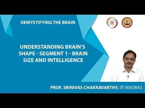 Understanding Brain's Shape-Segment 1-Brain size and intelligence