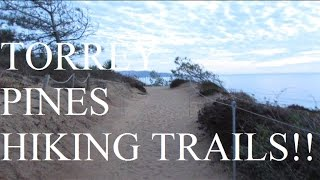 Torrey Pines Hiking Trails