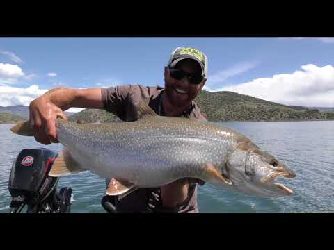 Lake Trout Fishing: Jigging For Giants