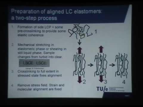 Photo responsive liquid crystals and liquid crystal polymers Lec. I - Broer Dick