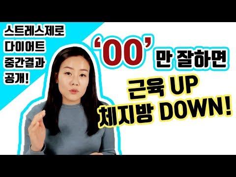 스트레스제로 다이어트 중간 점검 인바디 공개! (실패한 줄 알았는데 의외의 결과가!)