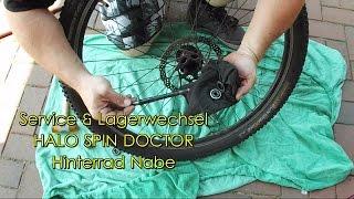 Halo Spin Doctor MTB Disc Hinterradnabe, Lagerwechsel & Wartung Freilauf
