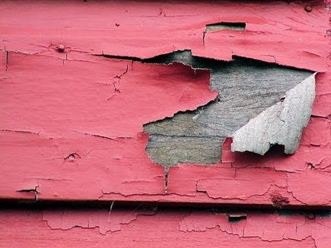 Lead Paint Hazards
