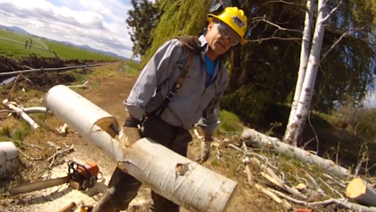 Build A Strongman Farmers Walk Log Diy Dudes Youtube