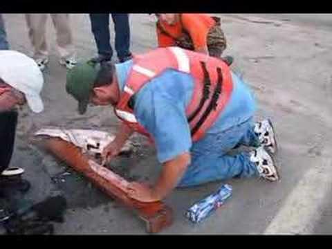How to fillet an Asian carp