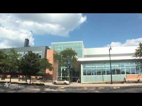 University of Illinois at Chicago, Tutorium in Intensive English