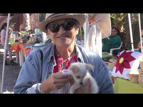 Loreto's organic and local farmers market