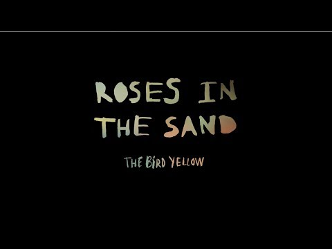 The Bird Yellow Roses In The Sand Video Oficial
