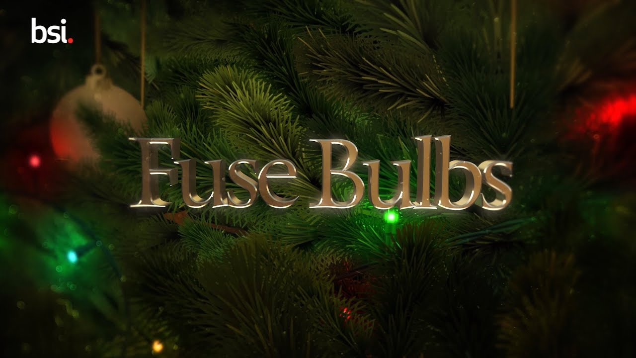Christmas Lights Safety Tips - How To Replace The Fuse Bulb