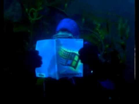 Sun Microsystems TV AD Blue screen of death