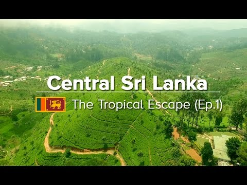 Central Sri Lanka: Things to do in Kandy, Sigiriya & Polonnaruwa (Tropical Escape #1)
