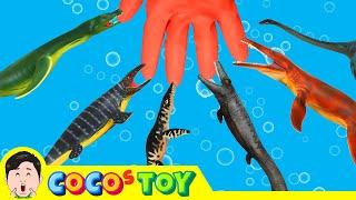우리집 어항 속 어룡 키우기 2, 물 속 공룡이름 외우기! 어린이를 위한 동물만화ㅣ꼬꼬스토이