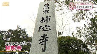 松井田城・補陀寺=安中市