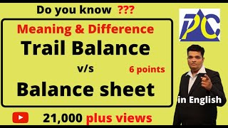 DIFFERENCE BETWEEN TRAIL BALANCE AND BALANCE SHEET.