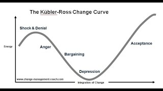 MGTOW Master Series #20 Stages of Grief Kubler/Ross Model Stage 1 Shock