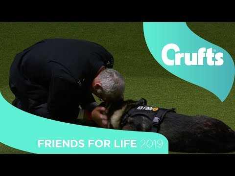 Friends for Life Final | Crufts 2019