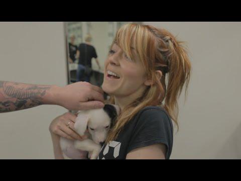 Puppy Prank Part 1