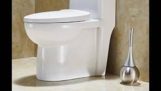 Fashion Toilet Brush https://www.amazon.com/shops/shariservice