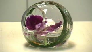 Vanda Orchid Arrangements : Floral Arrangements