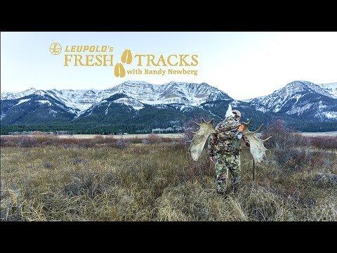 2017 Montana Shiras Moose with Matthew and Randy Newberg (Amazon Version)