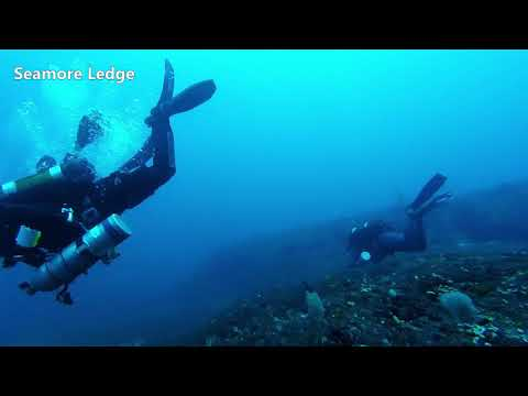 Deep Diving Sodwana Bay