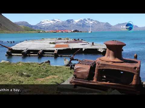 South Georgia Island, Grytviken