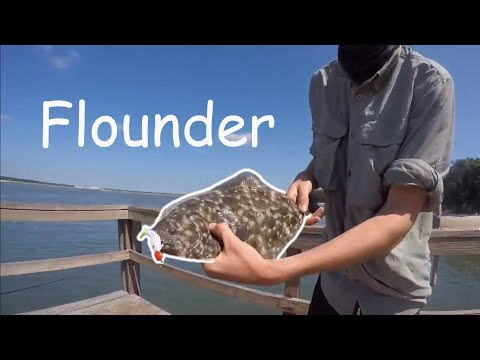 Flounder Fishing Around Vilano / St. Augustine With Surprise Catches