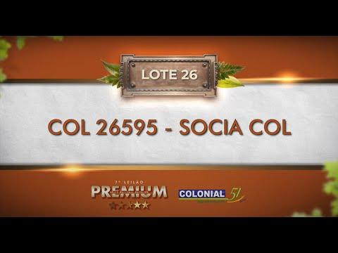 LOTE 26   COL 26595