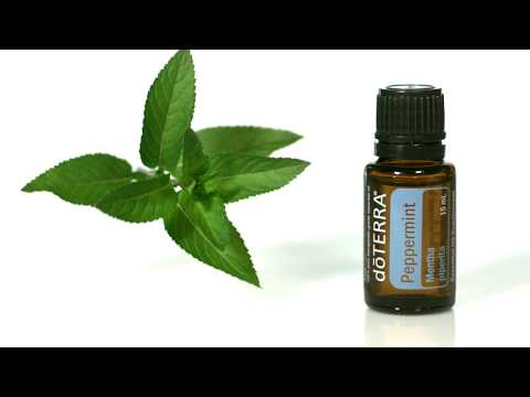 doterra®-peppermint-oil-uses-and-benefits