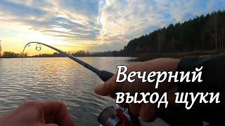 Шикарный Вечерний выход Щуки на пруду, Рыбалка с Лодки на спиннинг cмотреть видео онлайн бесплатно в высоком качестве - HDVIDEO