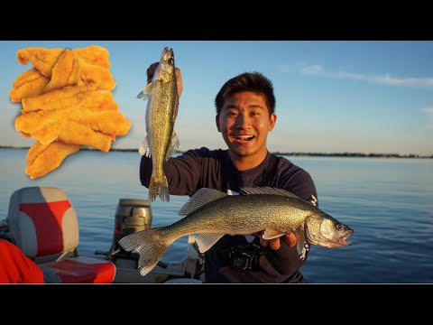Delicious Summer Walleye CATCH CLEAN COOK! (Surprise Catch)