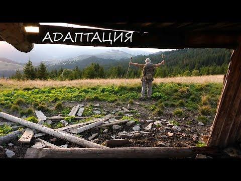 Адаптация. Вторая серия. Приключения в Карпатах