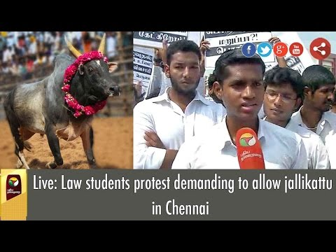 Live: Law students protest demanding to allow jallikattu in Chennai